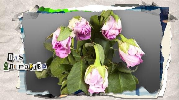 Teasergrafik Altpapier vom 5. Juli 2019: verwelkter Blumenstrauß