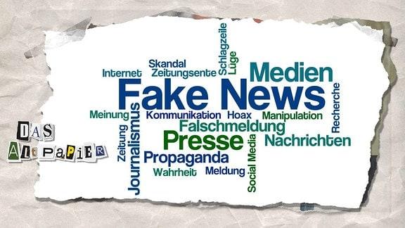 """Collage zur Medienkolumne Das Altpapier vom 21. November 2018: Wordcloud """"Fake News"""""""