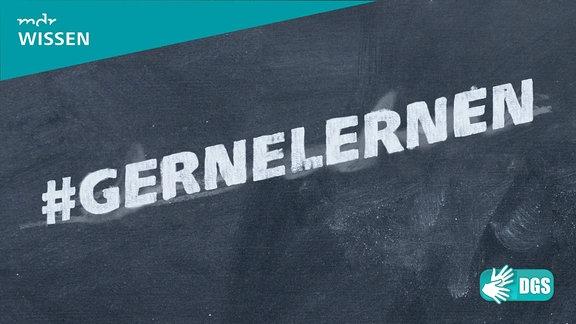 Kreideschrift auf Schiefertafel:  #GERNELERNEN. Logos: MDR WISSEN, DGS