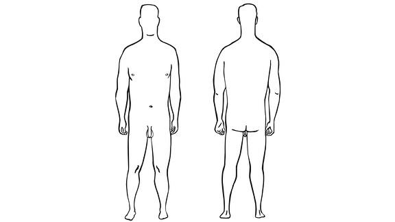 Männer-Körper
