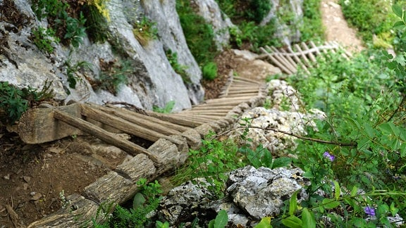 Eine Holzleiter windet sich einen steilen Felsen empor.