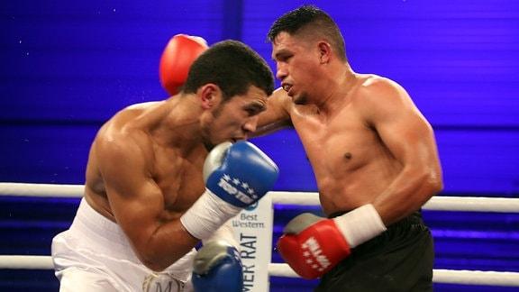 Mohammed Rabii gegen Jesus Gurrola - Super Welterweight