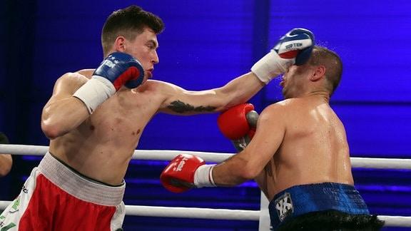 Tom Dzemski gegen Zoltan Sera - Light Heavyweight