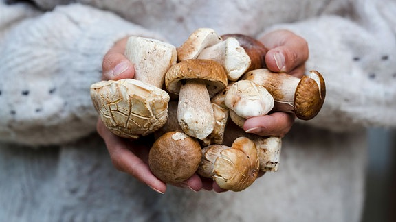 Frau mit einer Handvoll Pilze