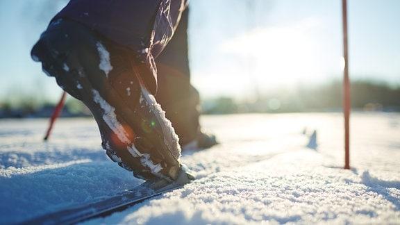 Fuß auf Langlaufski in Loipe
