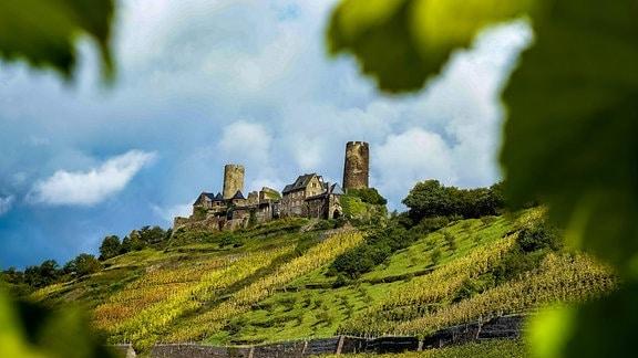 Burg Thurant in der Weinbauregion an der Mosel