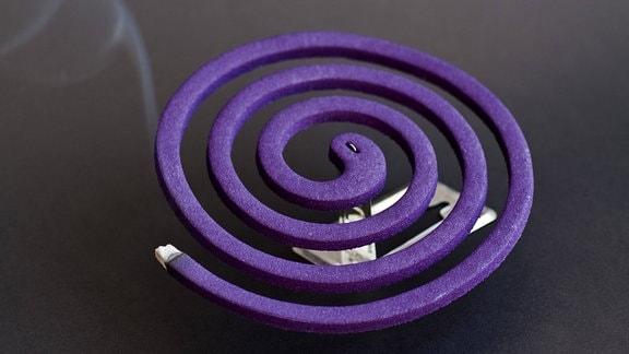 Brennendes violettes spiralförmiges Räucherstäbchen zur Vertreibung von Mücken und anderen Insekten
