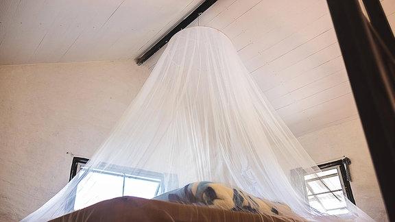 Moskitonetz über einem Bett