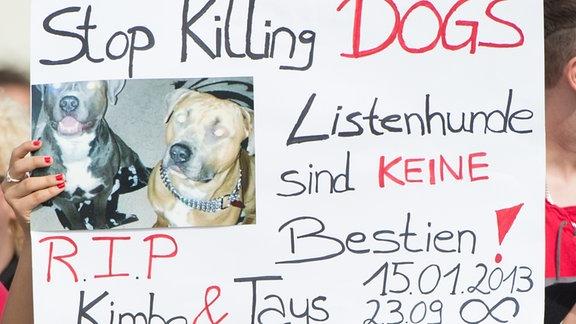 Protestplakat, nachdem Polizisten zwei American Staffordshire Terrier erschossen hatten