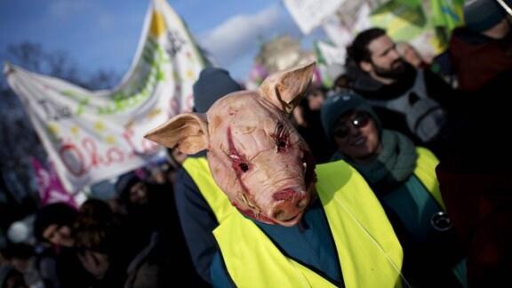 Ein Demonstrant mit Kostüm Schwein zum Thema Schweinezucht