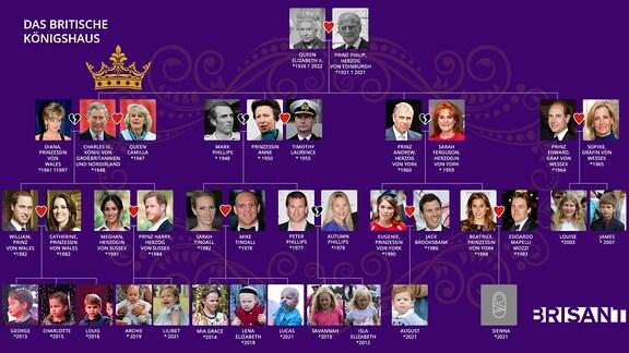 Stammbaum britische Royals