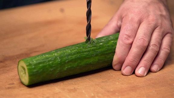 Vorsichtig werden mit einem Bohrer Löcher in eine Gurke gebohrt.