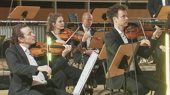 """Mitglieder des MDR-Sinfonieorchesters im Konzertvideo von """"Karneval der Tiere""""."""