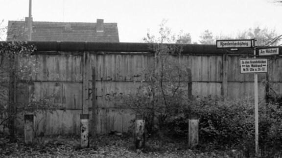 Potsdam, Straße am Waldrand 1982/2010