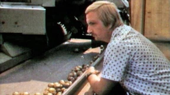 LPG-Bauer bei der Kartoffelernte 1990