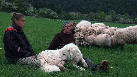 Eine Frau und ein Mann mit Hund und Schafen auf einer Wiese