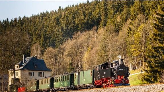 Die Preßnitztalbahn  (Museumsbahn zwischen Steinbach und Jöhstadt) kurz vor Schmalzgrube.