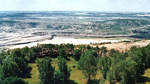 Blick von der Halde Mücheln in vom Bergbau ausgelaugte Landschaft mit hügeliger, zerfurchter Erde und Wasserlöchern.