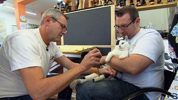 Zwei Männer behandeln eine Katze mit einer Bein-Prothese.