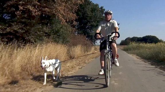 Der Erfinder bei der Ausfahrt mit seinem Hund.