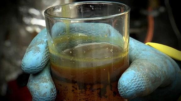 EIne Hand mit einem blauen Gummihandschuh hält ein Glas mit einer trüben Flüssigkeit.