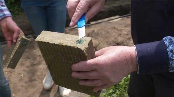 Ein Stück Holz mit einer speziellen Füllung wird hochgehalten.
