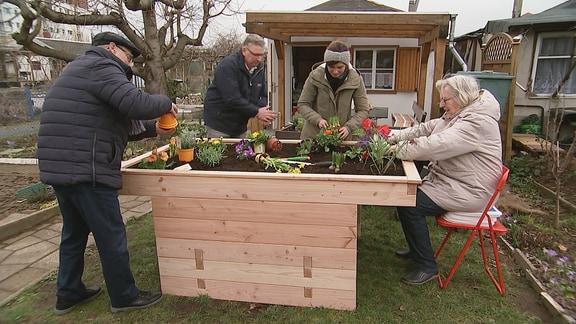 Vier Personen bepflanzen ein barrierefreies Hochbeet.