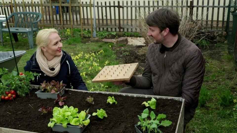 Gartenarbeit leicht gemacht   MDR.DE
