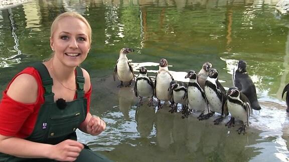 Henriette Fee Grützner im Pinguin-Gehege
