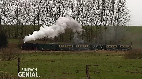 eine Dampflokomotive mit Zug in voller Fahrt auf Rügen