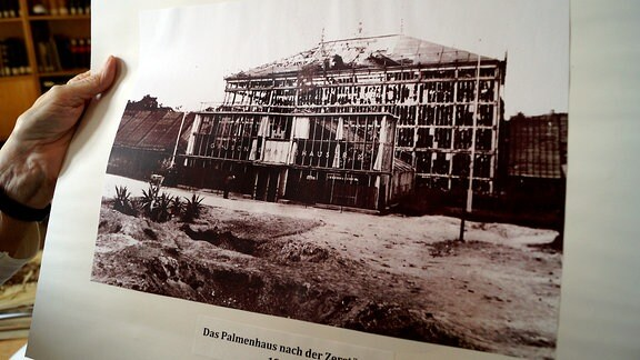 schwarz/weiß-Fotografie der zerstörten Grusonschen Gewächshäuser
