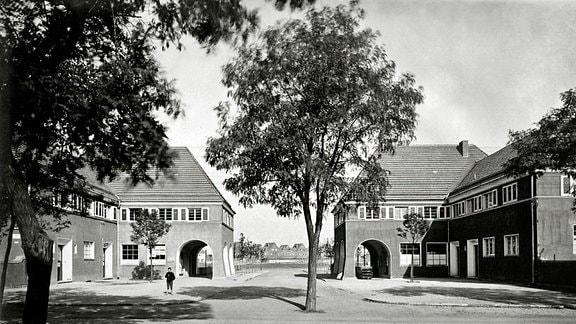 Gartenstadt Piesteritz: Apotheke und Ladenhaus - Aus der Piesteritz-Serie von Klaus Beneke