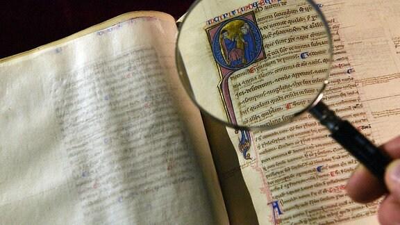 Aristoteles-Pergament aus der Amploniana Erfurt
