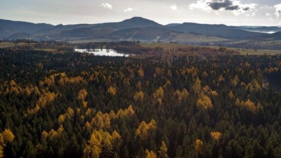 Blick auf Bäume, Wälder, einen See und Berge