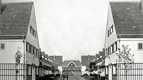Gartenstadt Piesteritz: Gartenweg mit Blick auf Torhaus - Aus der Piesteritz-Serie von Klaus Beneke
