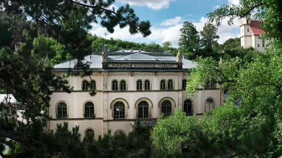 Seit mehr als 200 Jahren wird in Tharandt Forstwirtschaft gelehrt.