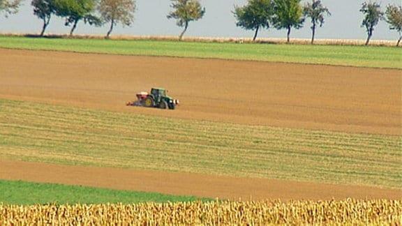 Ein Tracktor mit Pflug fährt über ein Feld.