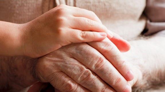 Kinderhände halten Hände eines älteren Menschen
