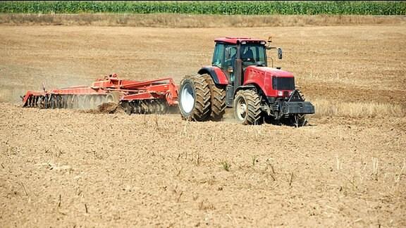 Ein Traktor mit einem Pflug auf einem Feld