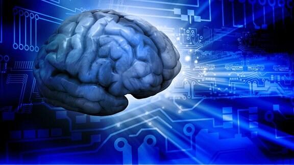 Abbildung eines Gehirns und Leiterplatten