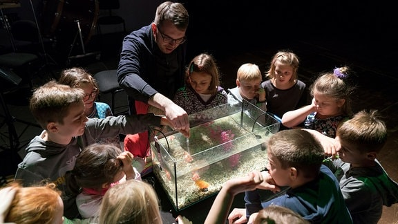 Kinder schauen in ein Aquarium
