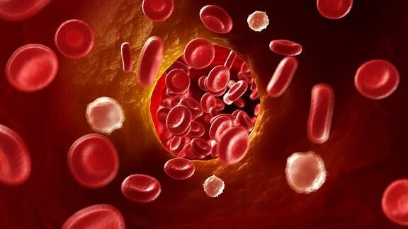 Computergrafik: Blutkörperchen in einer verengten Arterie