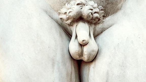 Der in Marmor gehauene Penis von Michelangelos David-Statue.