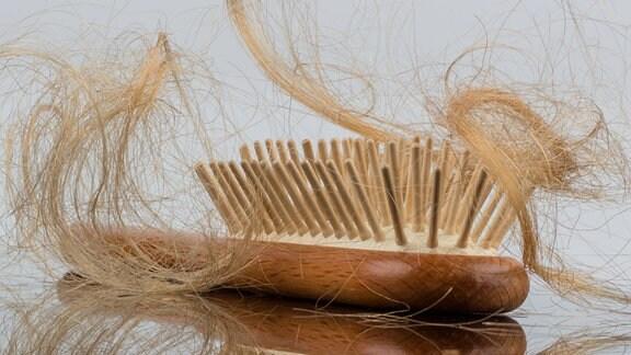 Eine Haarbürste mit Haaren.