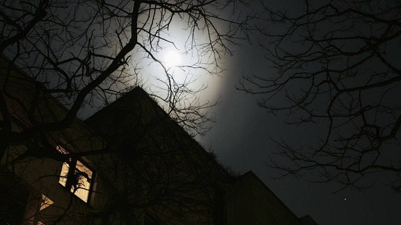 In einem Mietshaus brennt nachts in einigen Wohnungen Licht.