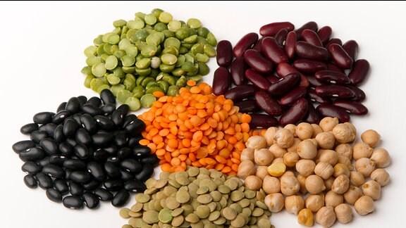diverse Bohnen, Erbsten, Kichererbsen und Linsen
