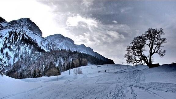 Eine verschneite Wiese, über die sich Fußspuren ziehen, vor einem alpinen Bergmassiv.