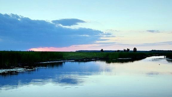 Der Magearu-Kanal vor Letea in der Abendsonne