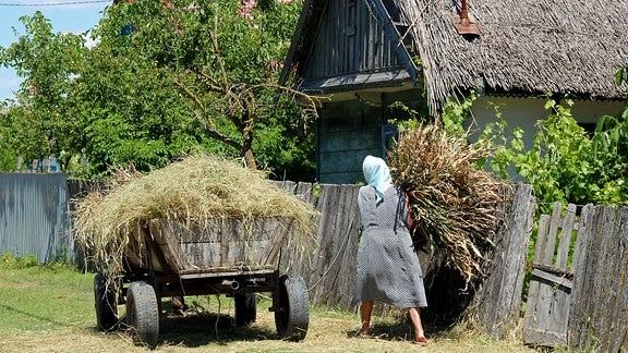 Dorfbewohnerin beim beladen eines Wagens