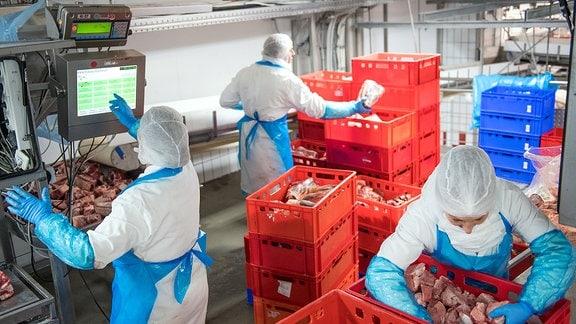 In einem Kühlhaus des Fleischunternehmens Tönnies wird Rindfleisch verpackt.